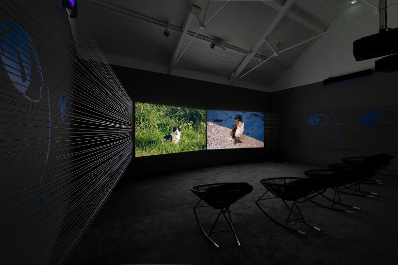 For the First Baby Born in Space by Webb-Ellis as part of Jerwood / FVU Awards 2019: Going, Gone exhibition at Jerwood Space