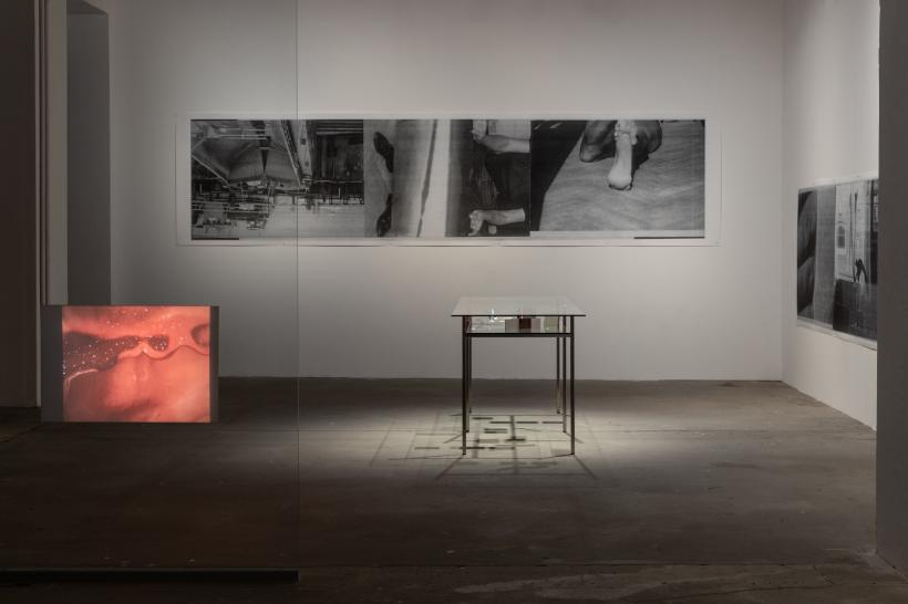 Expedition for Four Hands and Accompaniment (Detail), installation view of the exhibition at KW Institute for Contemporary Art, Berlin, 2019