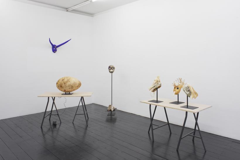 Joanna Rajkowska, The Failure of Mankind, installation view, l'etrangere