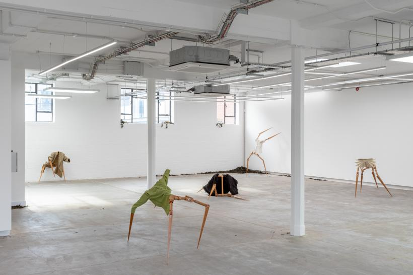 Installation view, 2019. Aniara Omann, Equanipolis. Courtesy of Humber Street Gallery and the artist, 2019. Photo by Jules Lister.