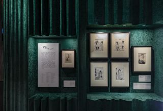 V&A Tim Walker Wonderful Things Exhibition Installation View - 'Pen & Ink' Section