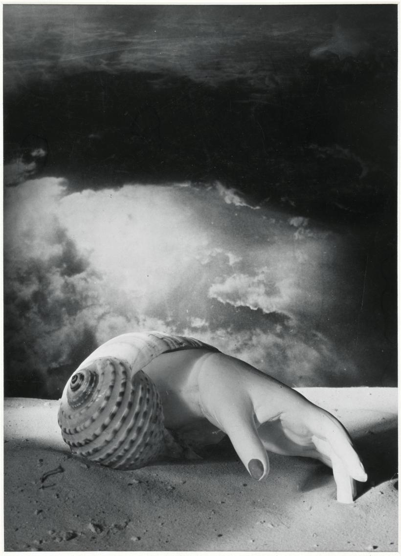 Dora Maar, Untitled (Hand-Shell) 1934, Photograph, gelatin silver print on paper, 401 x 289 mm
