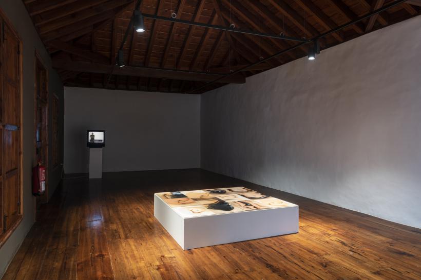 Ariela Azoulay, Lucía Pizzani, Installation View IMAGE, TEA Las Catalinas.