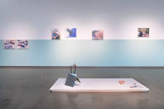 The Purpose of Disease, Installation view at Dodd Galleries, University of Georgia, 2020