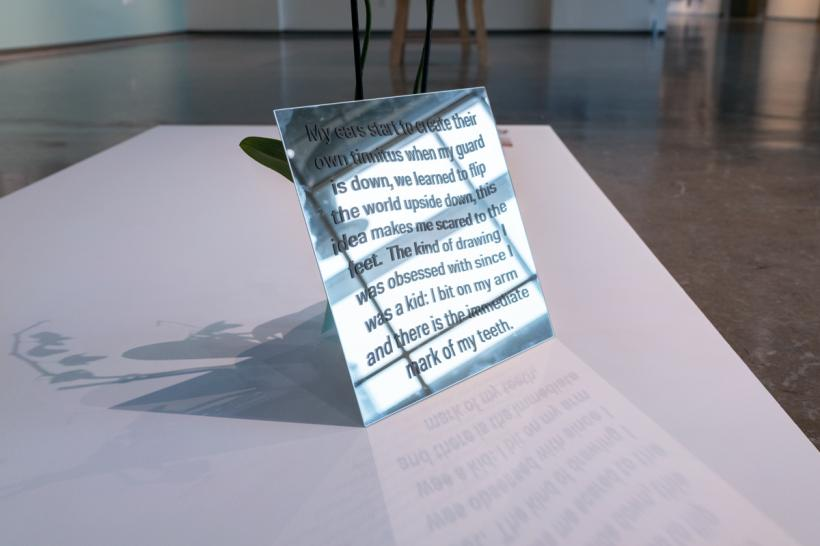 The Purpose of Disease, Installation views at Dodd Galleries, University of Georgia, 2020