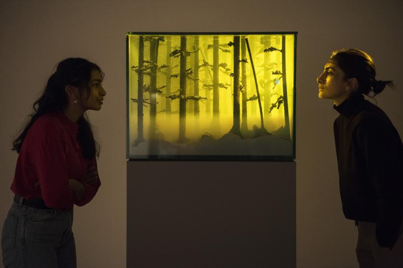 Mariele Neudecker, And Then the World Changed Colour: Breathing Yellow, 2019, at Among the Trees, Hayward Gallery, 2020