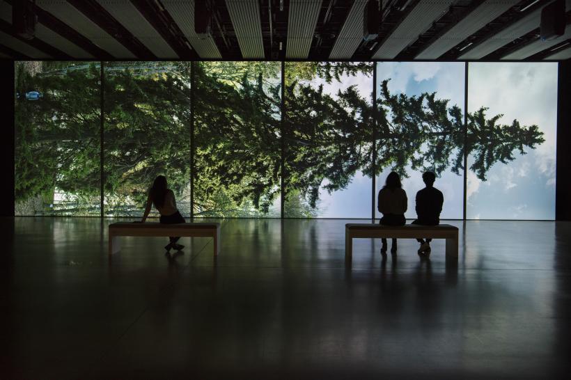 Eija-Liisa Ahtila, Horizontal - Vaakasuora, 2011, at Among the Trees, Hayward Gallery, 2020.