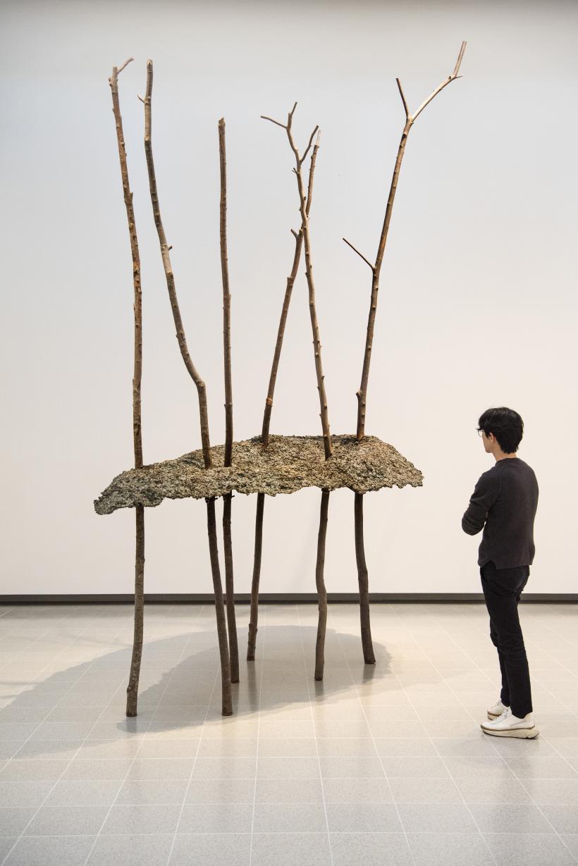 Giuseppe Penone, Soffio di foglie, 1982, at Among the Trees, Hayward Gallery, 2020.