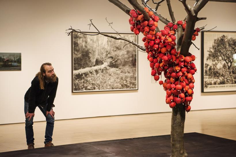 Anya Gallaccio, because I could not stop, 2002 at Among the Trees, Hayward Gallery, 2020.