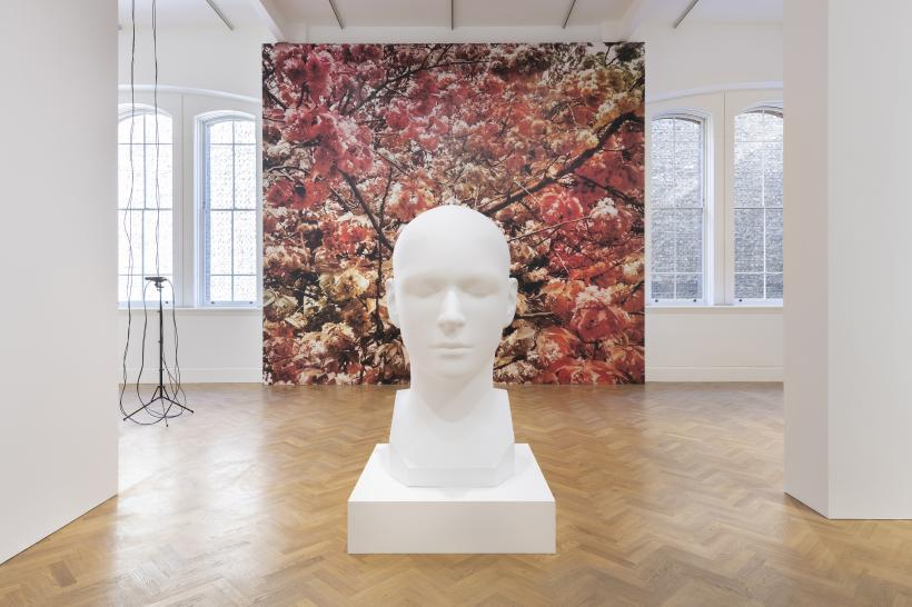 Installation view of Trevor Paglen: Bloom, Pace Gallery, 6 Burlington Gardens, London, September 10 - November 10, 2020.