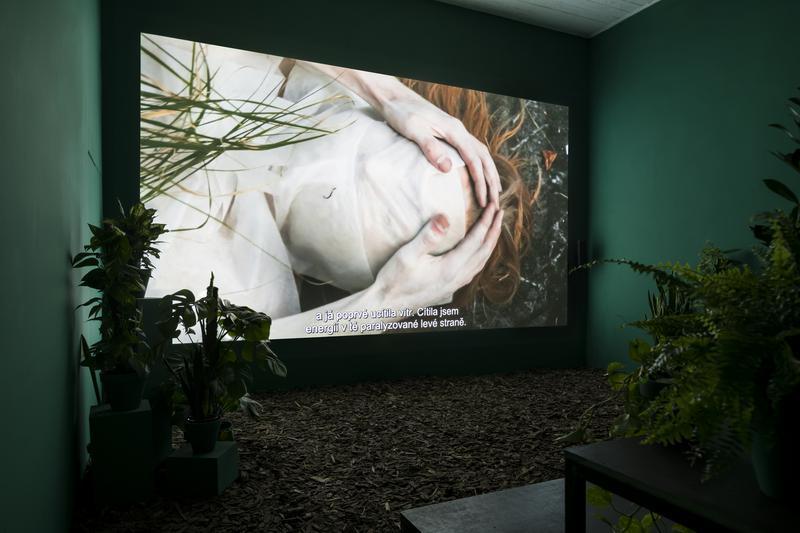 Melanie Bonajo, Night Soil - Fake Paradise, 2014