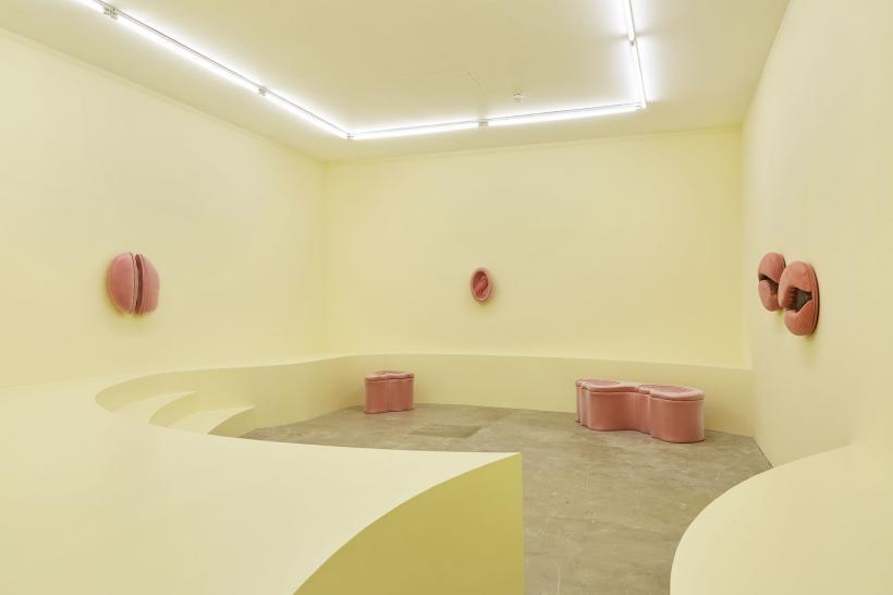 Grace Woodcock: GUT-BRAIN Installation view 17 September - 31 October