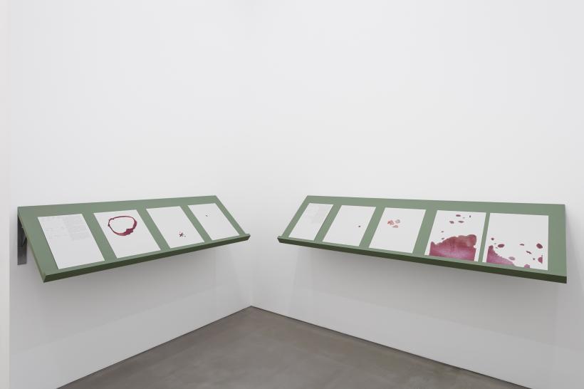 Lawrence Abu Hamdan exhibition view, Maureen Paley, London, 2020