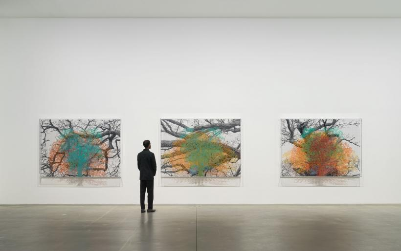 Installation view, 'Charles Gaines: Multiples of Nature, Trees and Faces', Hauser & Wirth London, online from 29 January - 1 May 2021