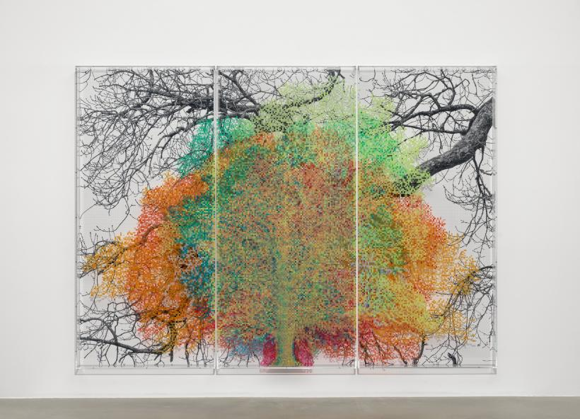 Numbers and Trees: London Series 1, Tree #9, Idol Lane