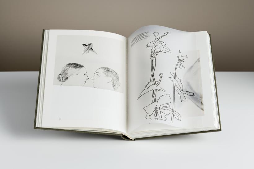 Luchita Hurtado, Hauser & Wirth Publishers