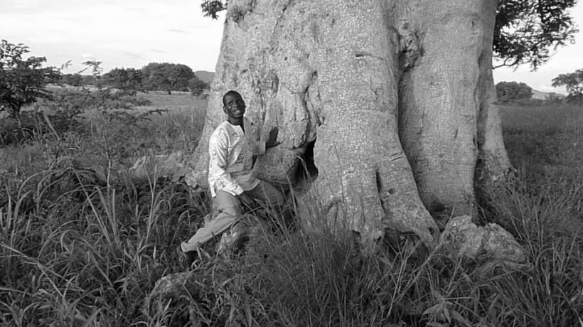 slave tree video
