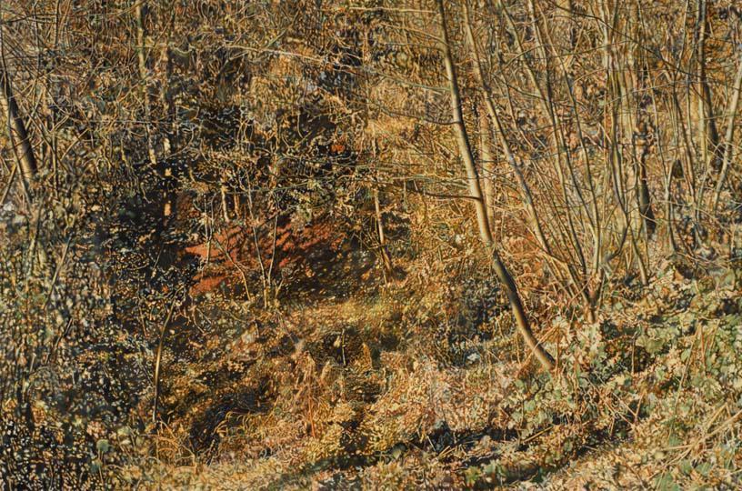 Gertsch Herbst