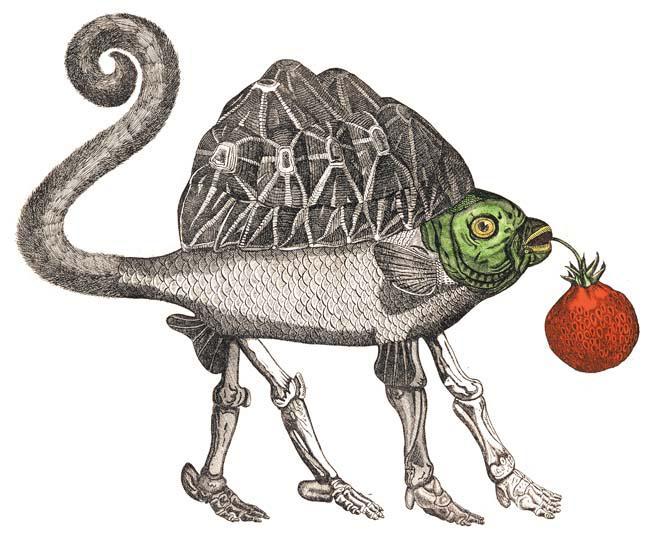 Detail Natural History 3
